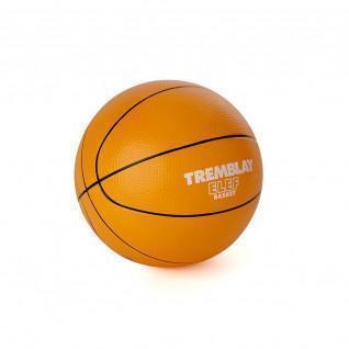 Schuimbal Tremblay olifantenbasketbal