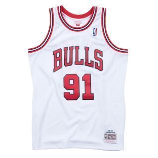Chicago Bulls jersey Dennis Rodman