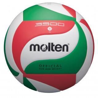 Gesmolten V5M3500 trainingsballon