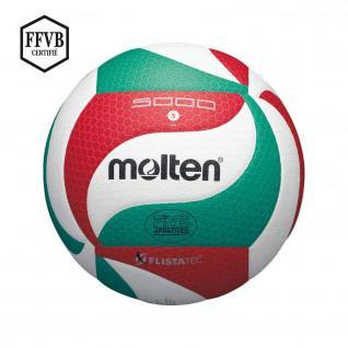 Gesmolten V5M5000L wedstrijdbal